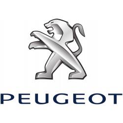Peugeot (26)