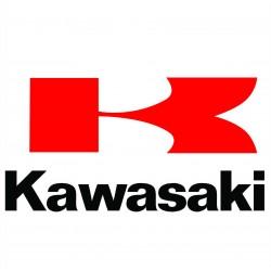 KAWASAKI (1)